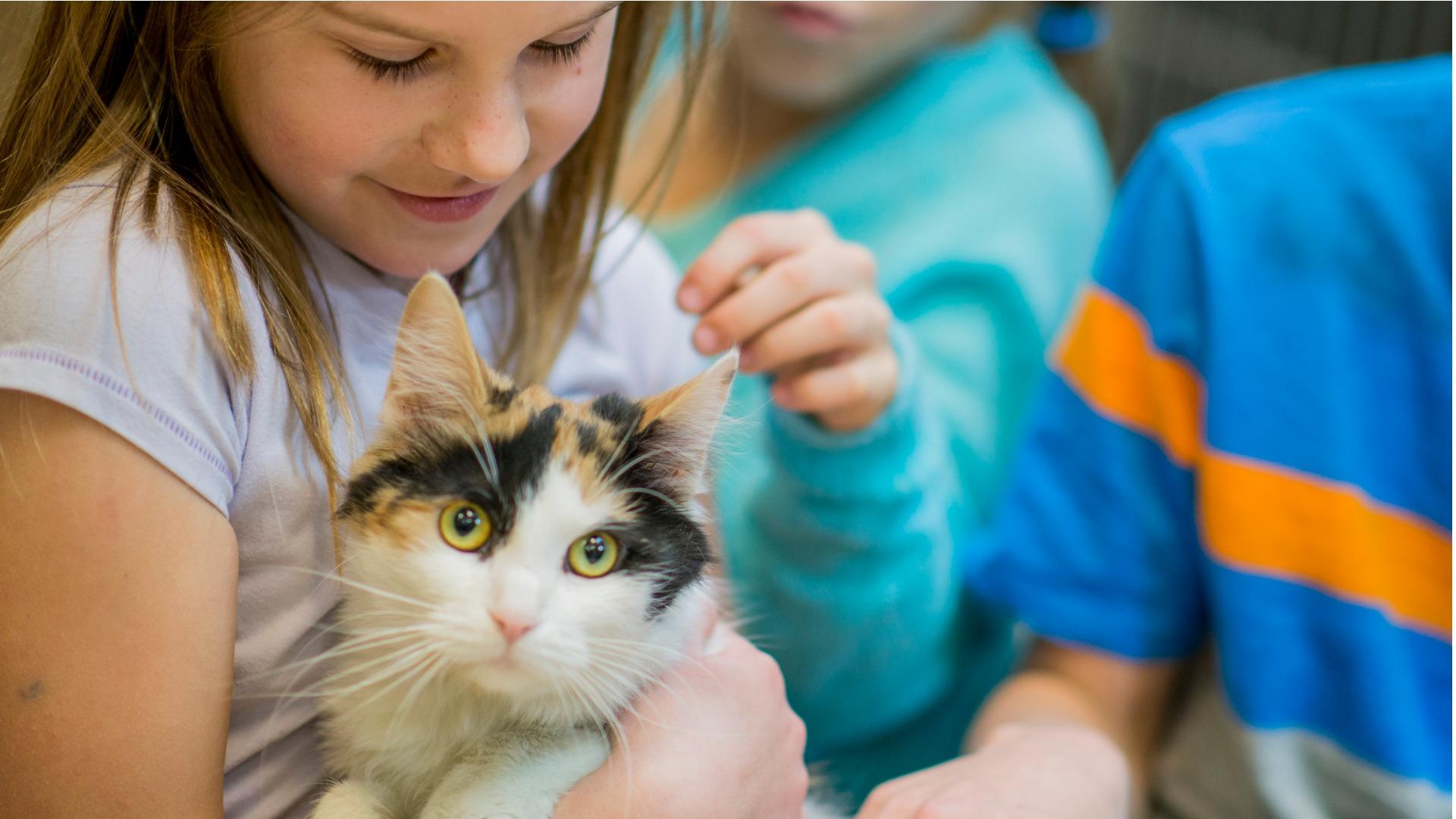 Lapset tarvitsevat aikuisen ohjausta siihen, miten olla vuorovaikutuksessa eläinten kanssa.