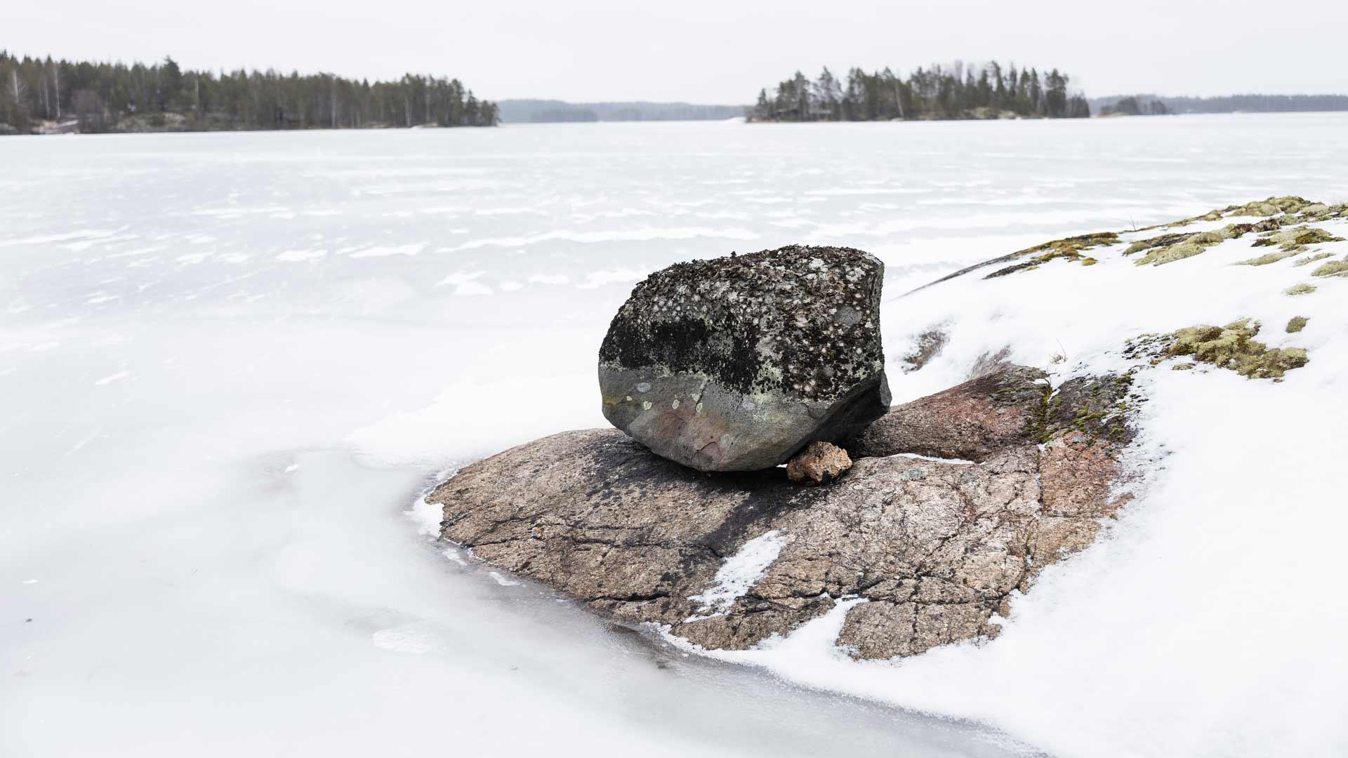 Tällaisten kivien suojissa norpat paistattelevat auringossa.