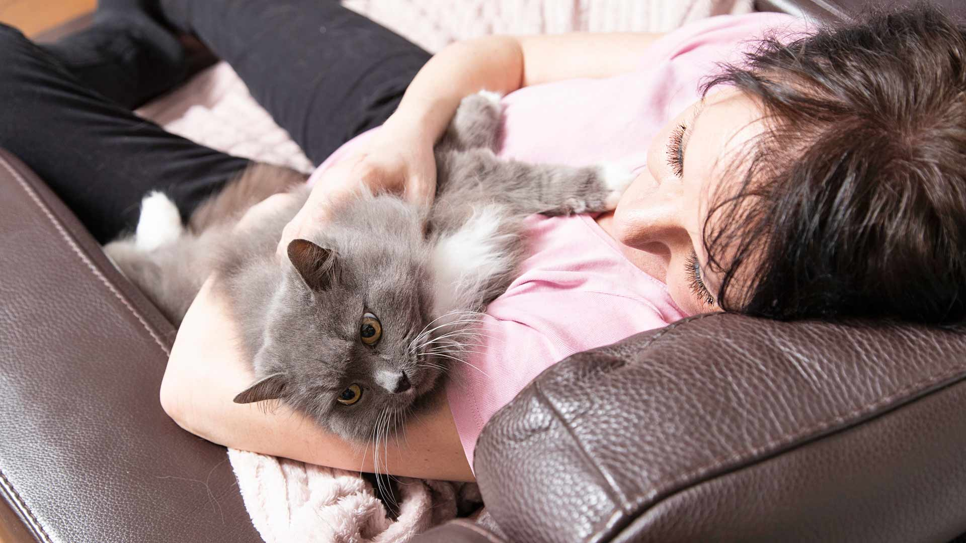 Reija kokkola ja kissa