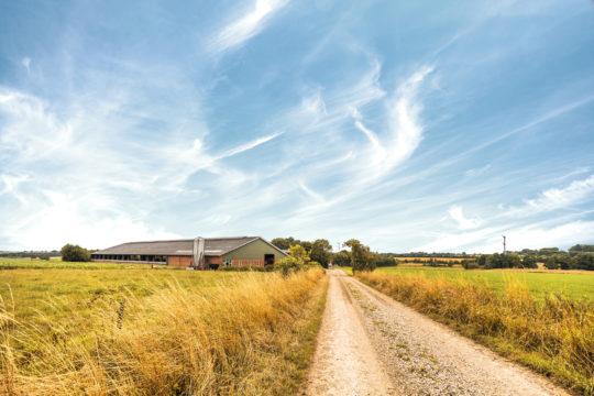 Kausityöt maatiloilla tarjoavat ansaintamahdollisuuden muun muassa lomautetuille pätkätyöläisille.