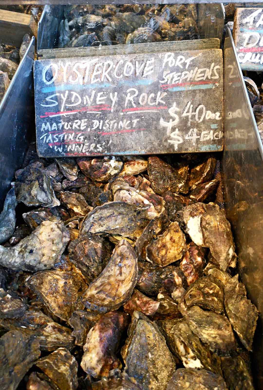 Sydney Rock -osterit ovat kaupungin erikoisuus ja myös Tomin suosikkiherkku.