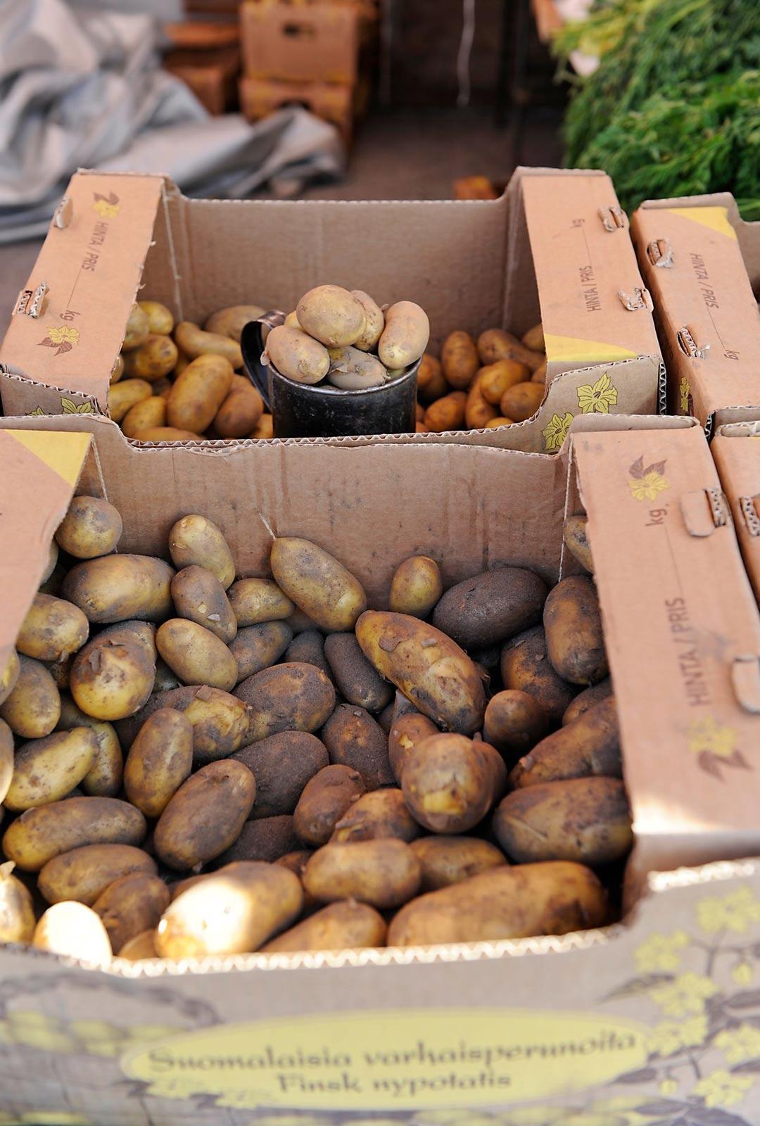 Kristiinankaupunki on maan suurimpia perunantuottajia. Peräti kolmannes ruokaperunasta viljellään täällä 2 000 hehtaarin alueella.