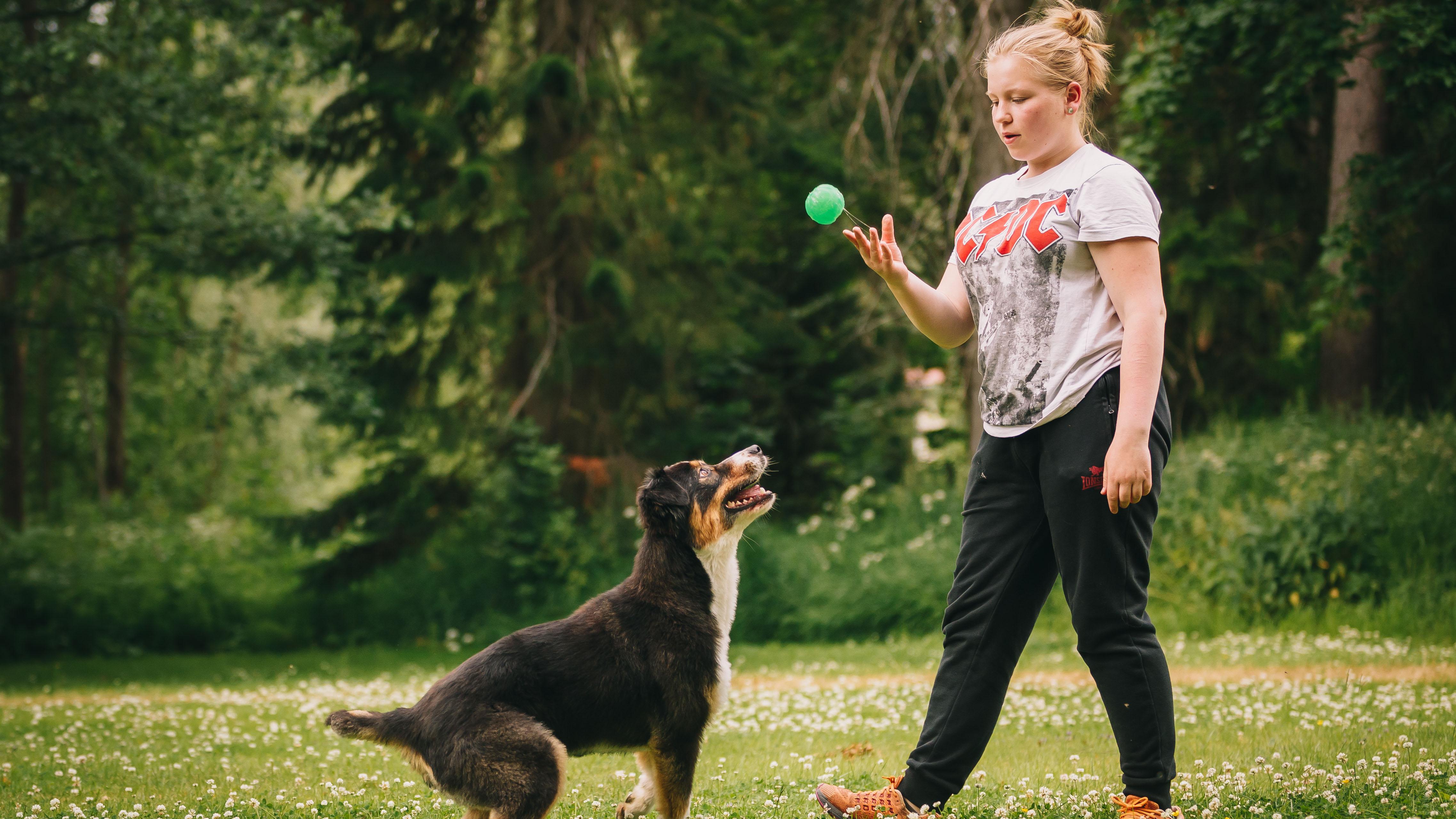 Aamu tiesi jo yläasteella, että hänestä tulee eläintenhoitaja ja rakkaasta harrastuksesta työ. Maaliskuussa hän valmistui 19-vuotiaana unelma-ammattiinsa.