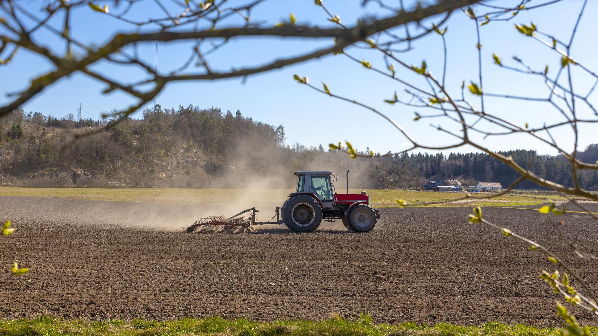 Traktori kyntää pellolla.