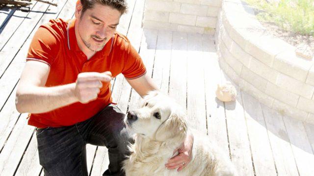 """""""Koirat myös aistivat millä tuulella omistaja on ja pyrkivät usein sen mukaan ilahduttamaan ja miellyttämään."""""""