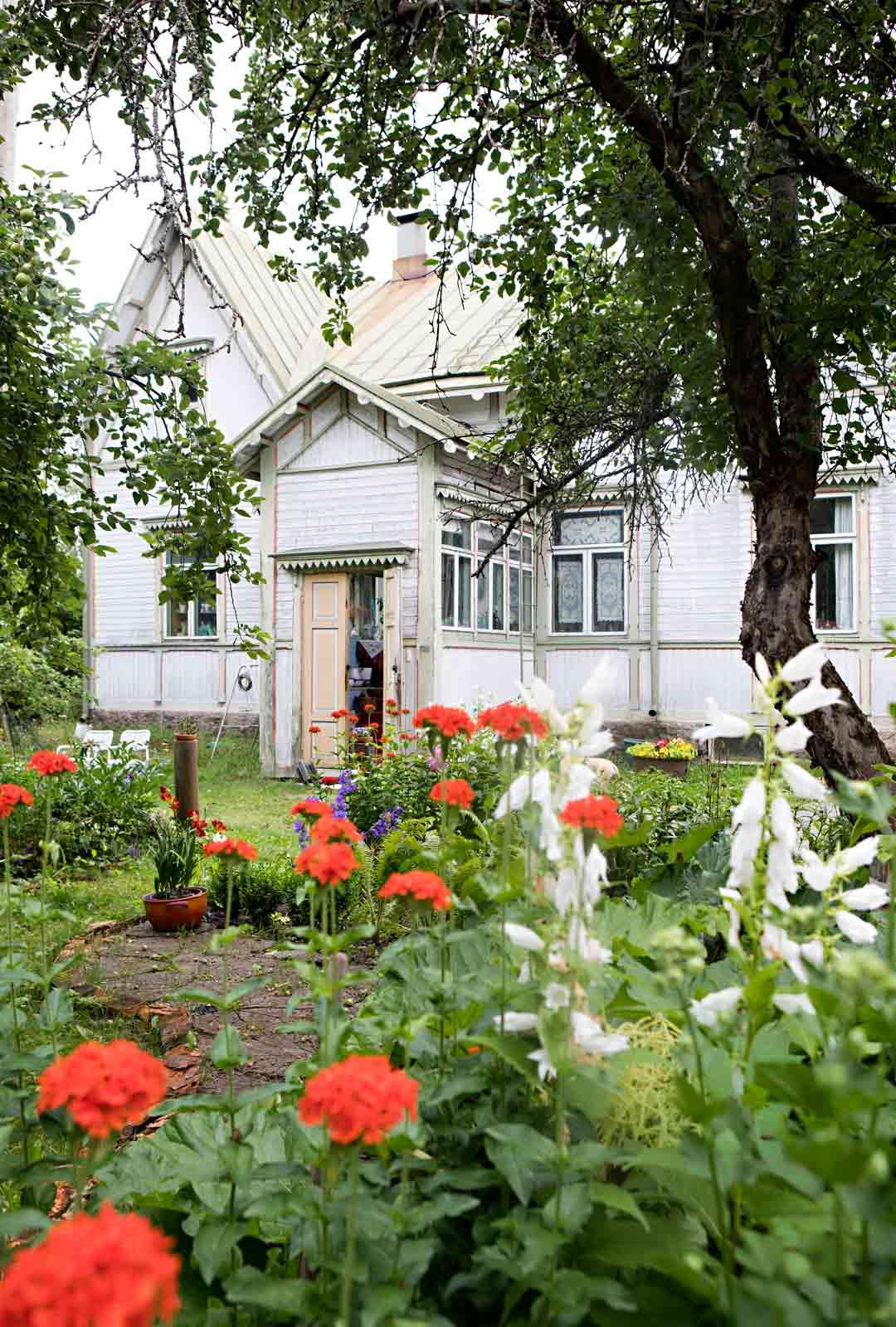 Vanhaa hirsihuvilaa ympäröi iso puutarha, jossa kasvaa vanhoja perennoja sekä hedelmäpuita.