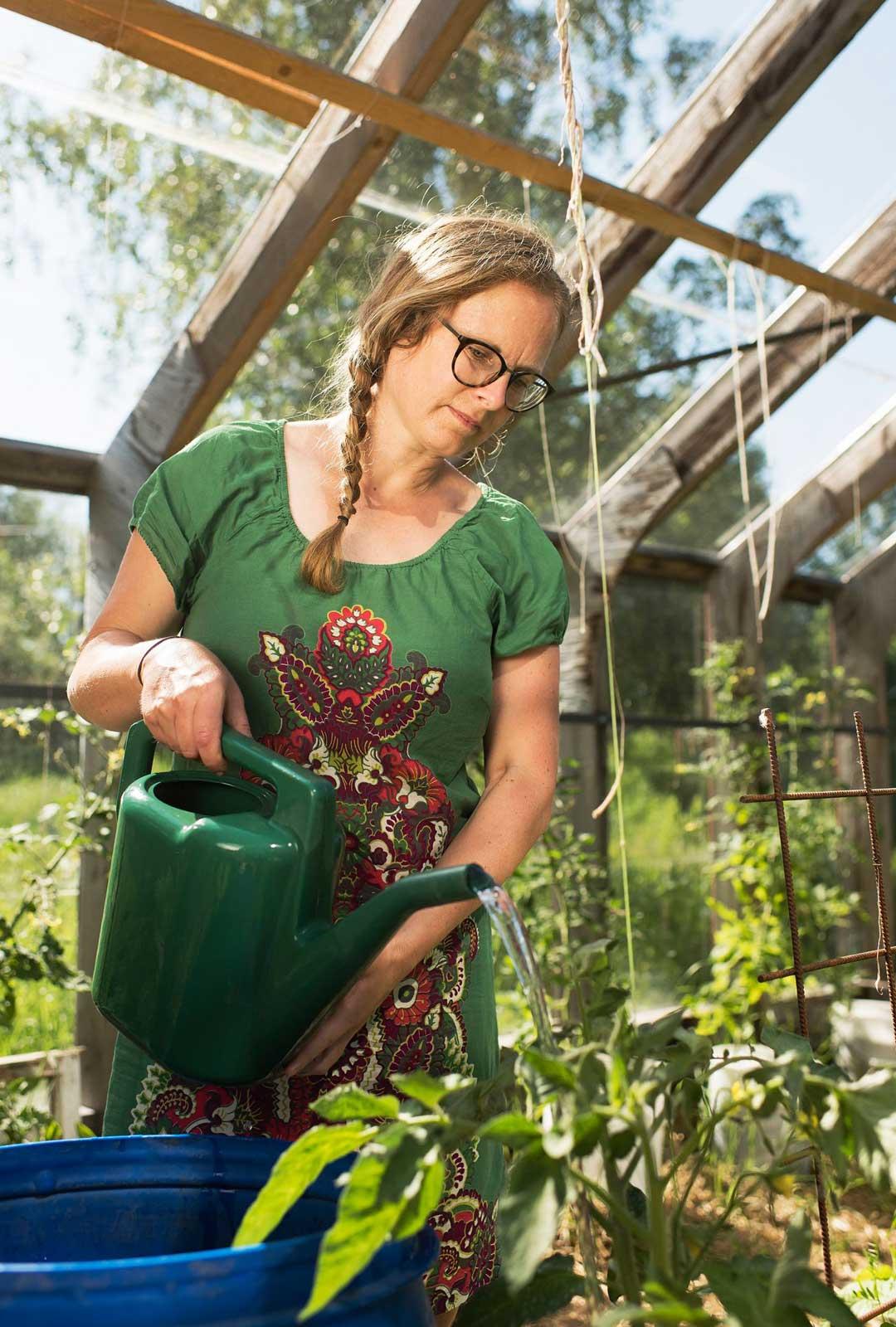 Lasisessa kasvihuoneessa voi kasvattaa kaikkea tomaateista munakoisoihin ja meloneihin.