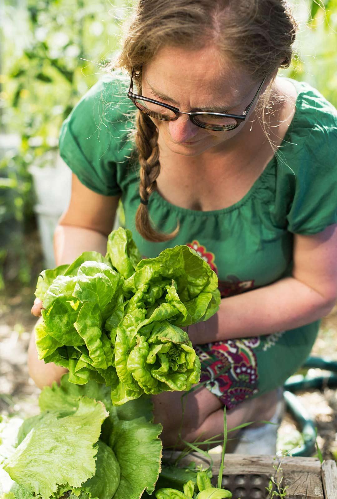 Oman pellon salaatti on Maria Österåkerille arvovalinta: se on paitsi melkein ilmaista, myös pieni ympäristöteko.