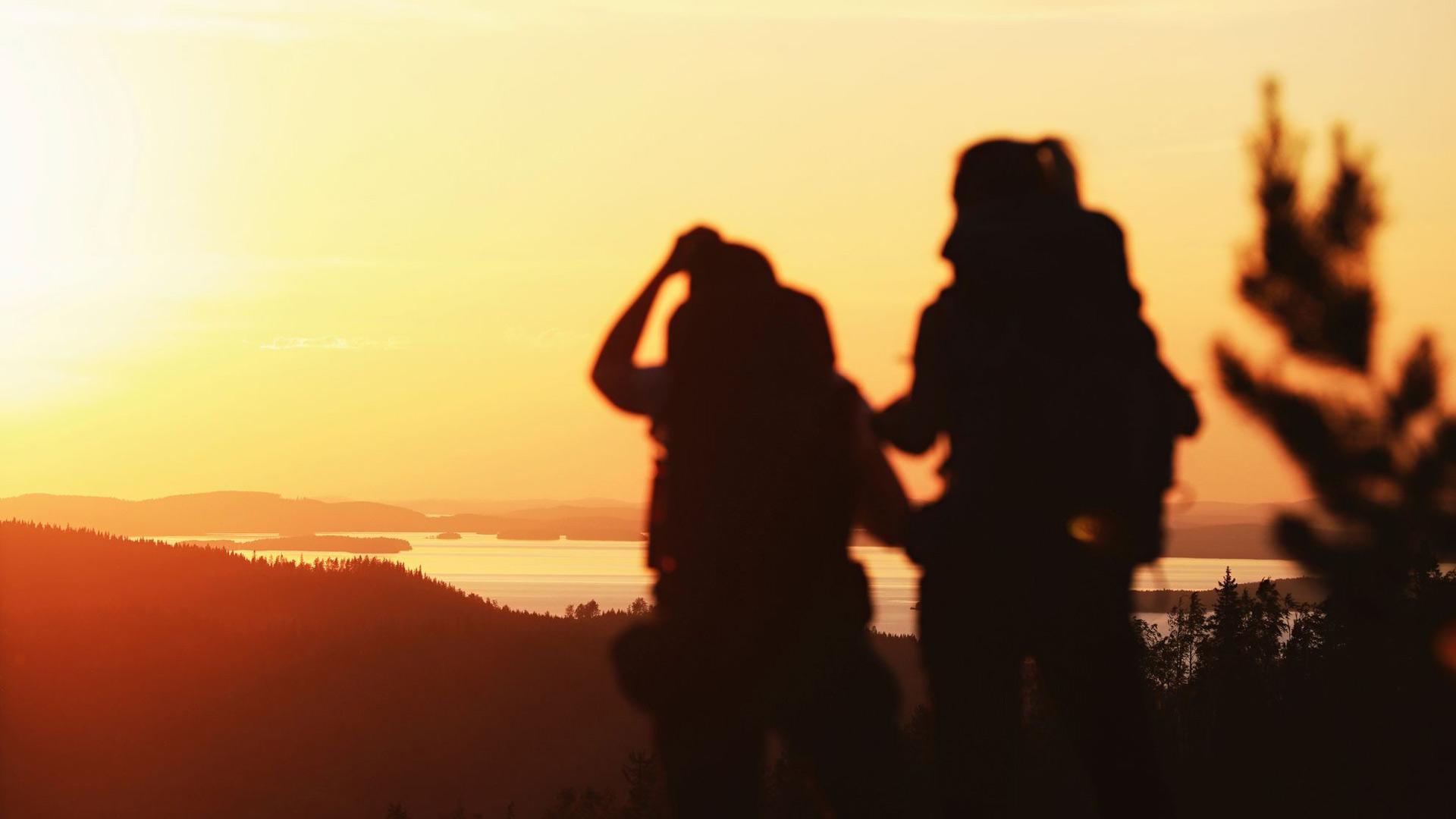 Merkattuja polkuja on Kolilla 80 kilometriä vaeltajien ilona.