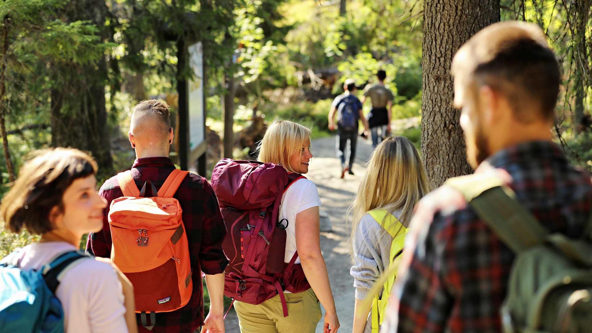 Ukko-Kolin huipulta avautuu Suomen tunnetuin kansallismaisema. Portaaton, 0,8 kilometrin mittainen reitti soveltuu myös lastenvaunuille ja heille, joille liikkuminen on vaikeampaa.
