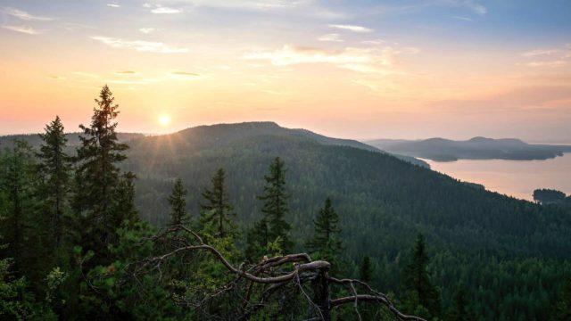 Kolin kolmelta huipulta aukeaa upea näkymä yli Pielisen järven.