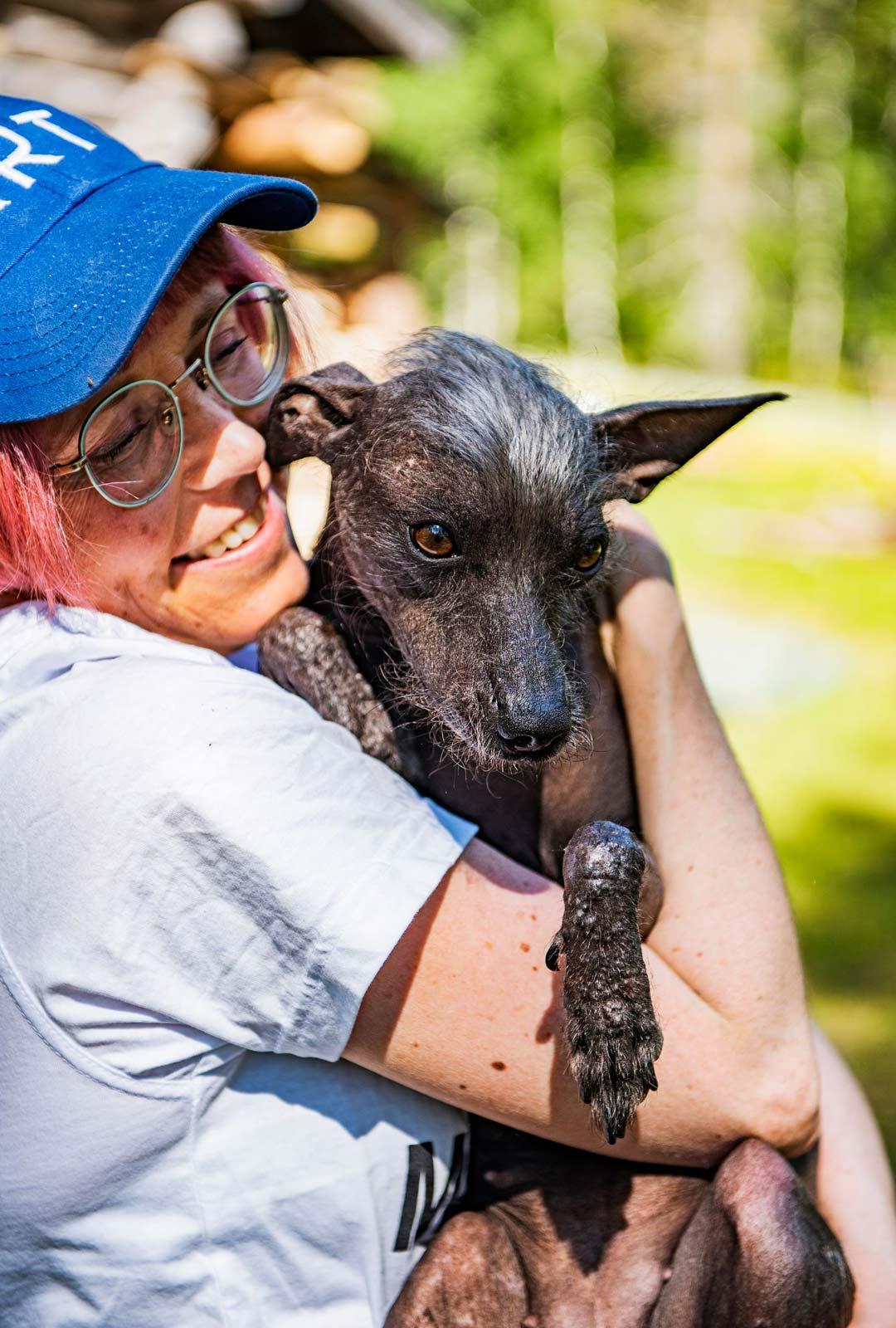 Meijun Stiga-koira nauttii kesän lämmöstä.