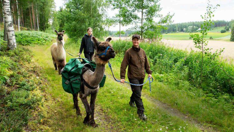 Kim on tottunut eväiden kantaja vaelluksilla. Kaneli seuraa  kiltisti isänsä perässä. Taluttajina Anu Koivisto (oik.) ja Elna Vaittinen.