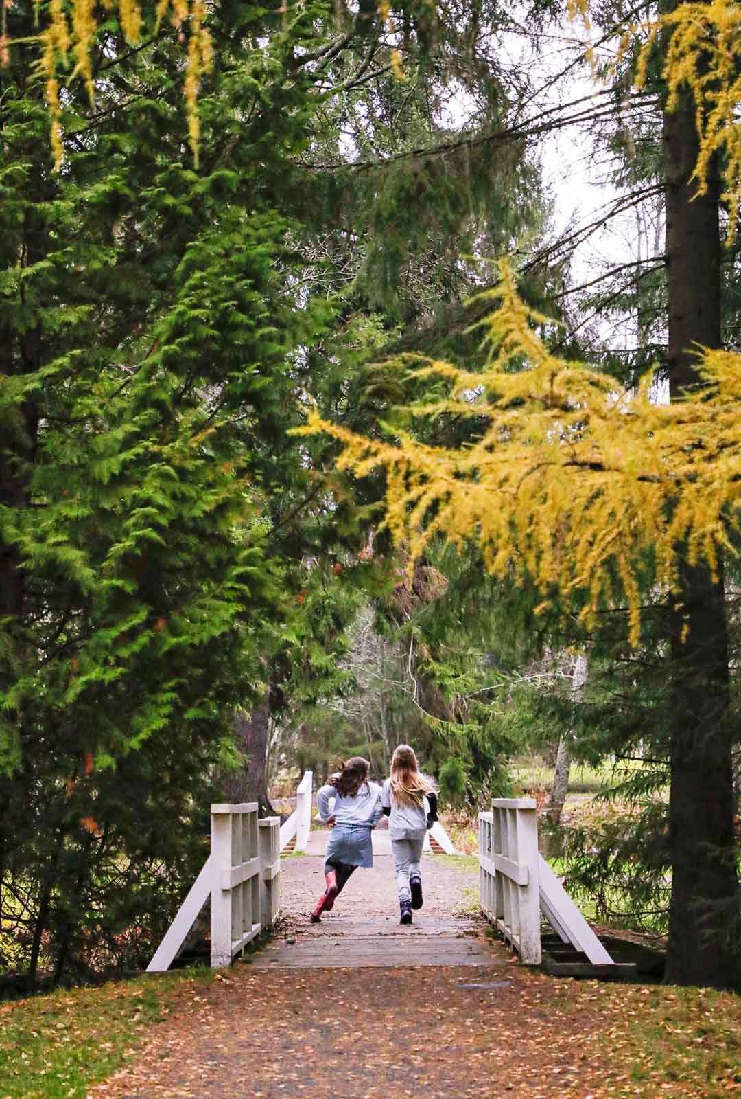 Hupisaarten kaupunginpuistossa on kaunista myös rospuuttoaikaan, sillä monet valkeat sillat ja jokisuisto patoineen ovat upeita kelillä kuin kelillä.