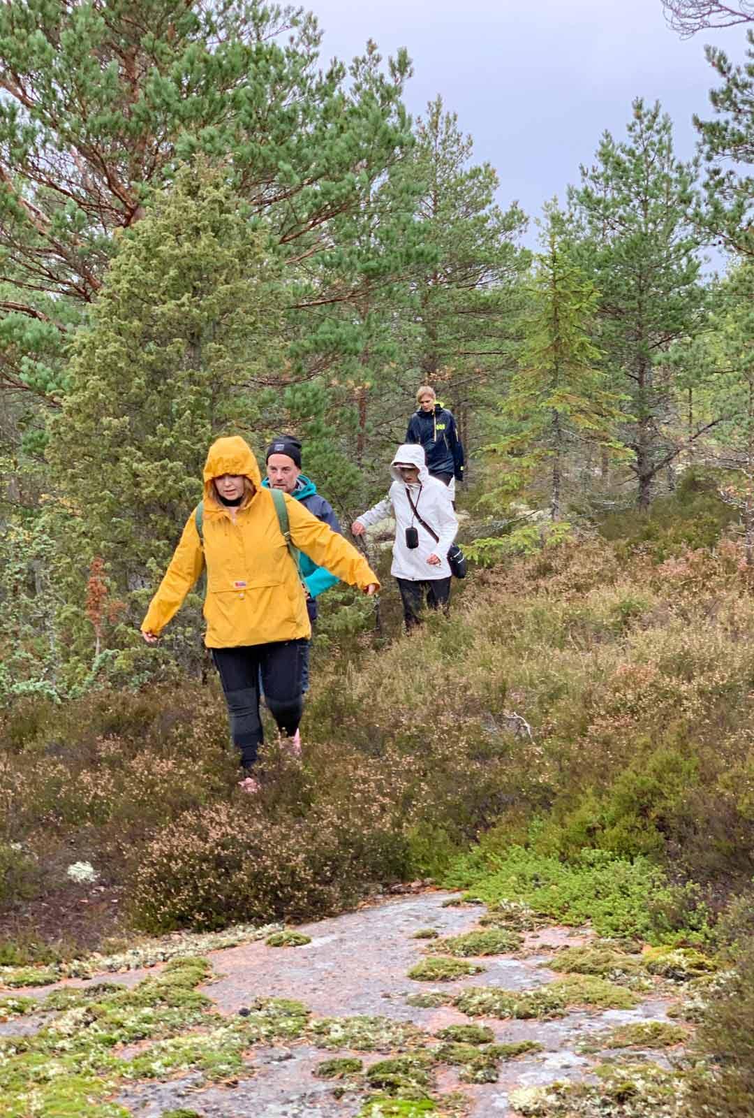 Jos pääsee vaeltamaan Ahvenanmaalla korkeille kallioille, maisemat ovat pysäyttävän hienot.