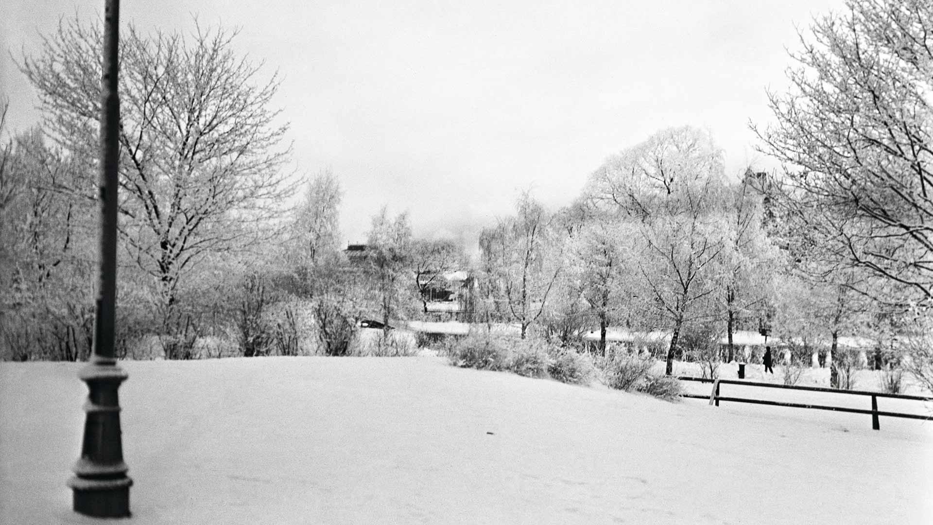 Talvi Kaisaniemessä