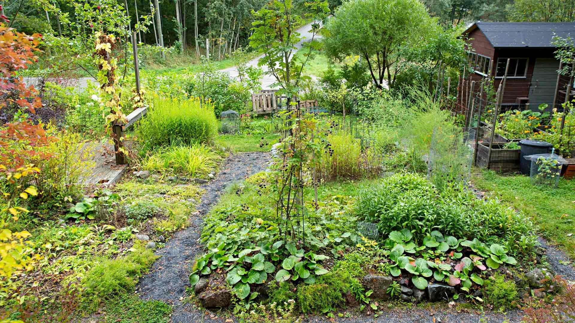 """""""Mummonmökkiäni ympäröi puutarha, jossa voin toteuttaa itseäni monella tasolla."""""""