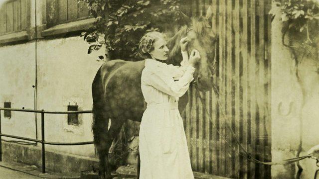 Agnes Sjöbergin väitöskirja käsitteli hevosten silmäeritteitä. Kuva on Berliinissä tehdystä silmäkokeesta vuodelta 1915.