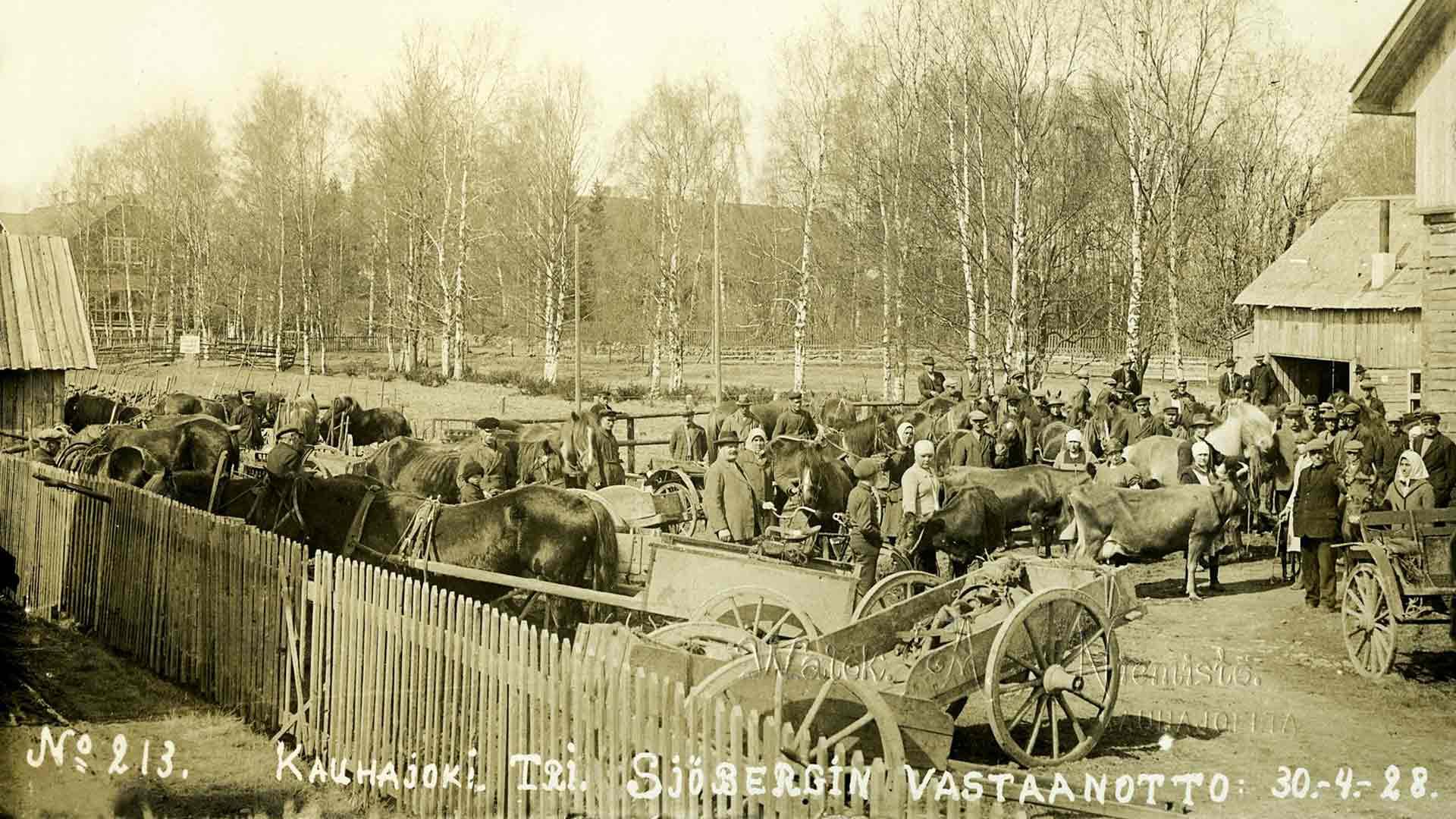 Kansa luotti naiseläinlääkärin taitoihin. Tässä on kuhinaa Sjöbergin Kauhajoen-klinikalla keväällä 1928.
