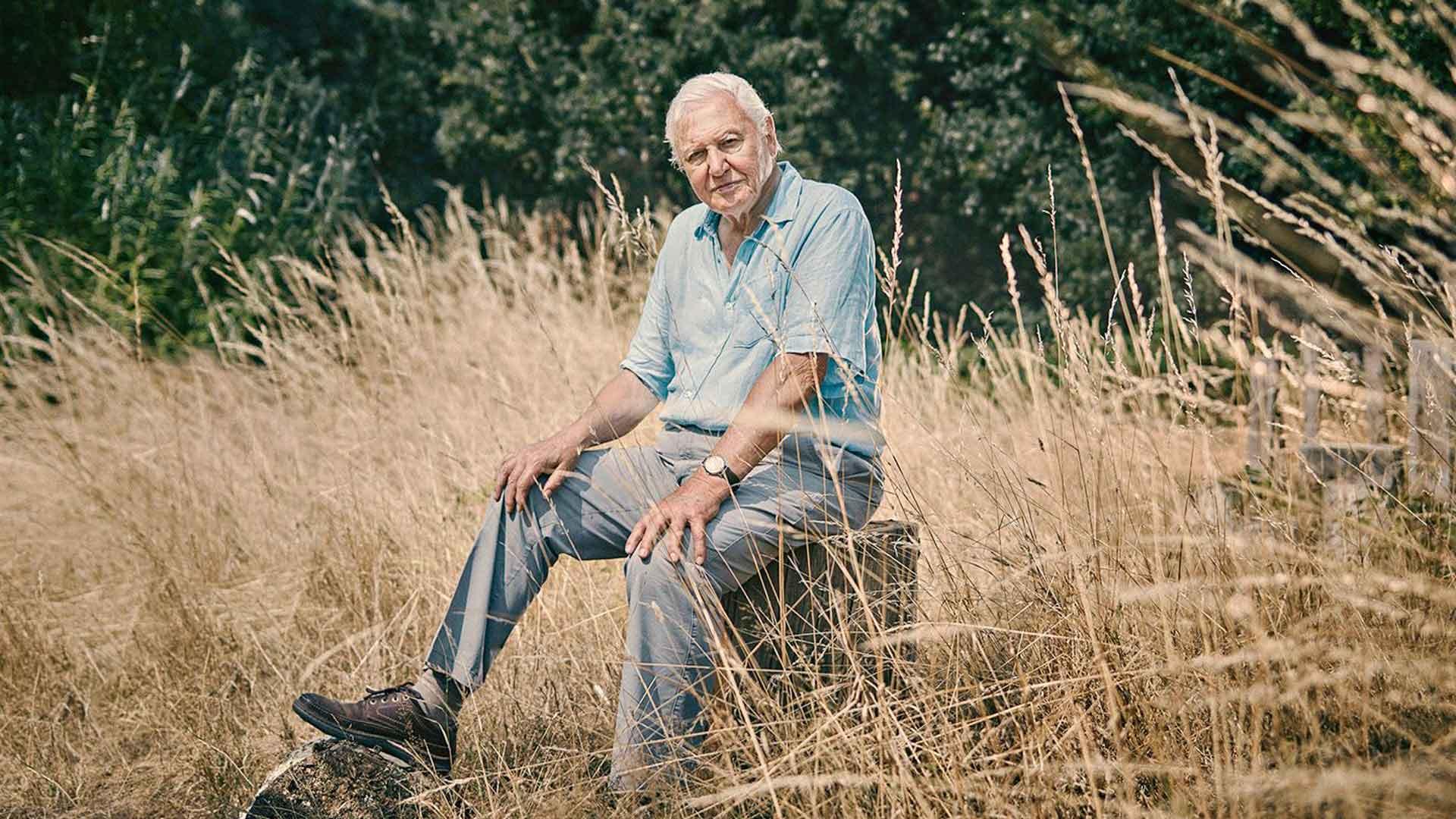 Totuus sukupuutosta, kuvassaSir David Attenborough.