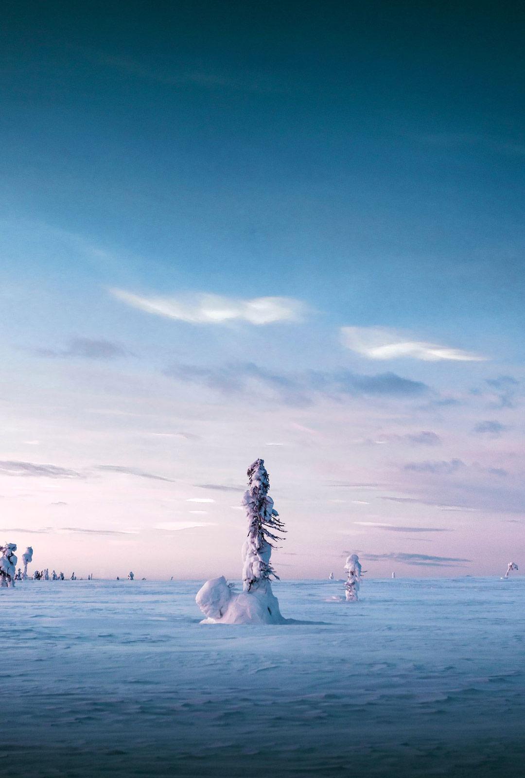 Kun kaamos päättyy, valon määrä alkaa pohjoisessa lisääntyä hurjaa vauhtia. Jo kahden kuukauden kuluttua auringonnousu nähdään Utsjoella ensimmäisenä Suomessa.