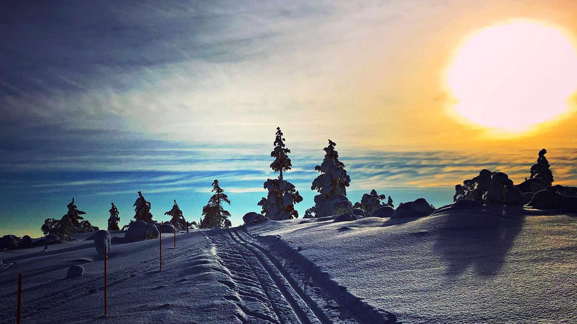 Saariselän erämaaladuilla hiihdetään hiljaa ja nautiskellen.