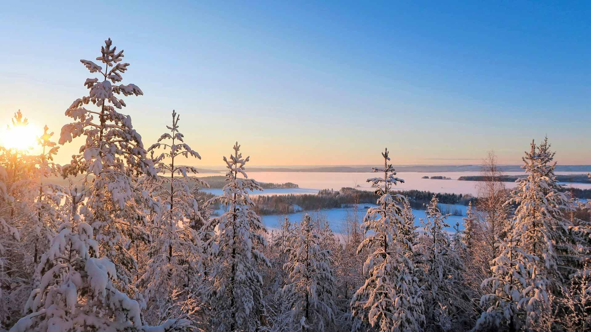 Toivontornista näkyvä Pielinen on Suomen neljänneksi suurin järvi.
