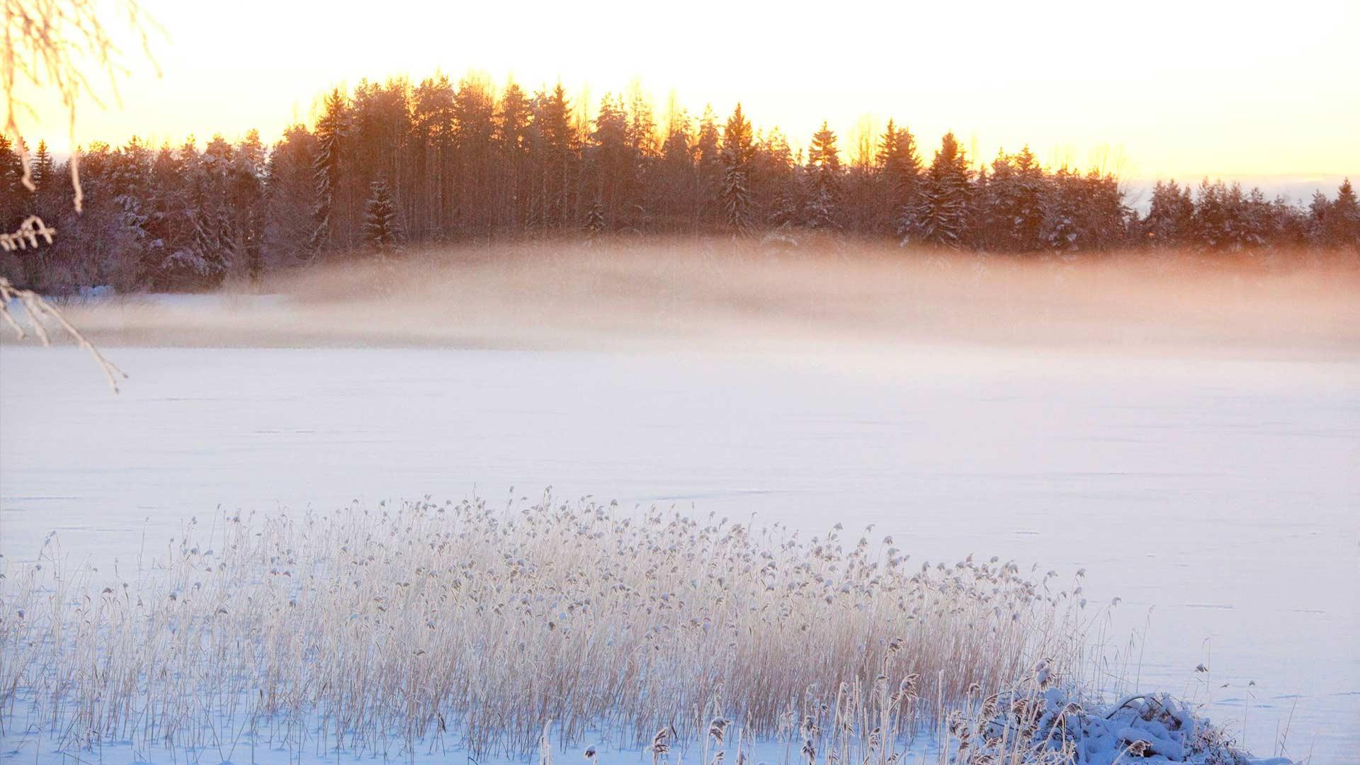 Retkipäivänä Pielisen jääpeitteen ylle kohoaa upea usvaverho.