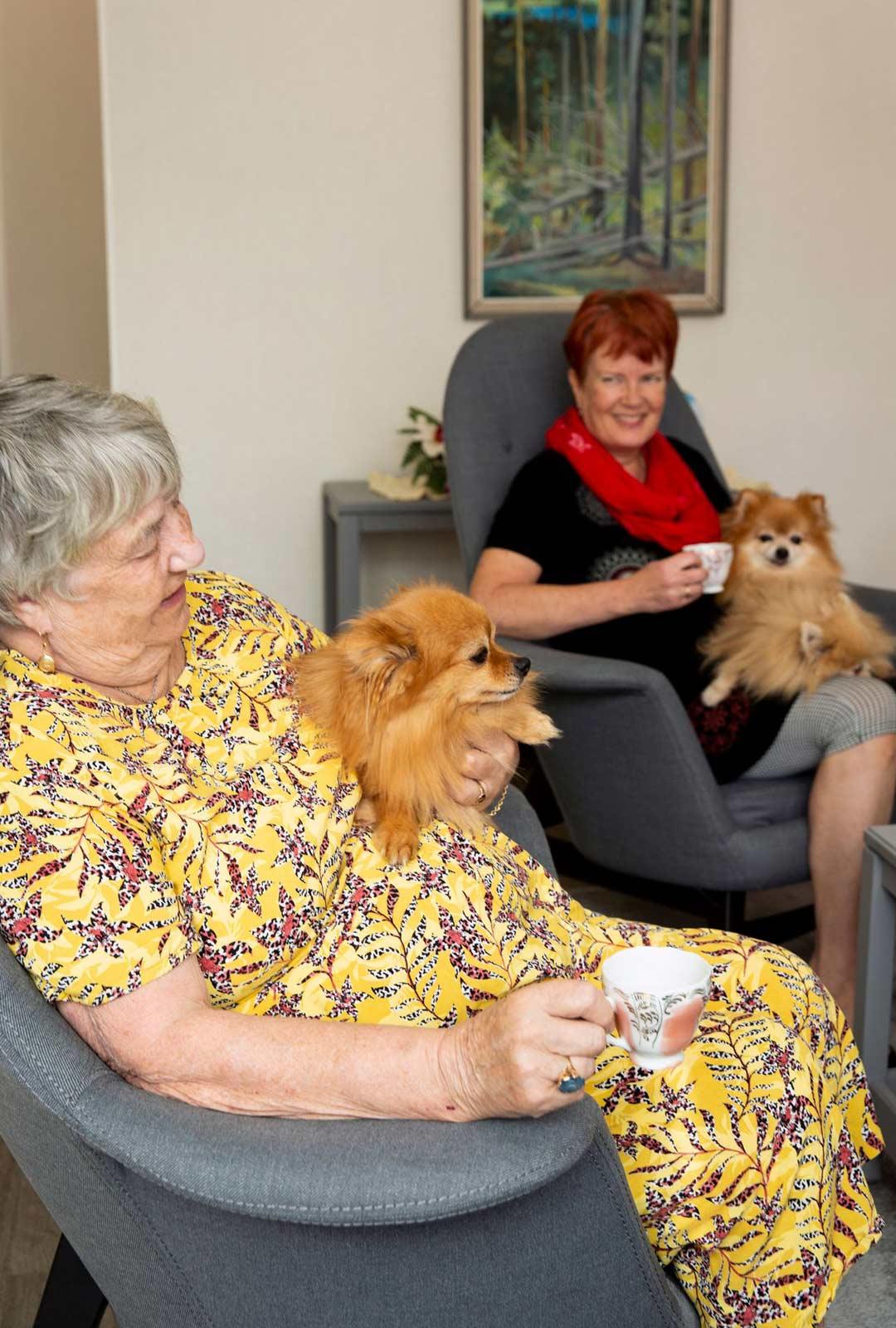 Sinikka Rouhiaisen kanssa päiväkahvilla tytär Kirsi Saura ja koirat Jade ja Bess.