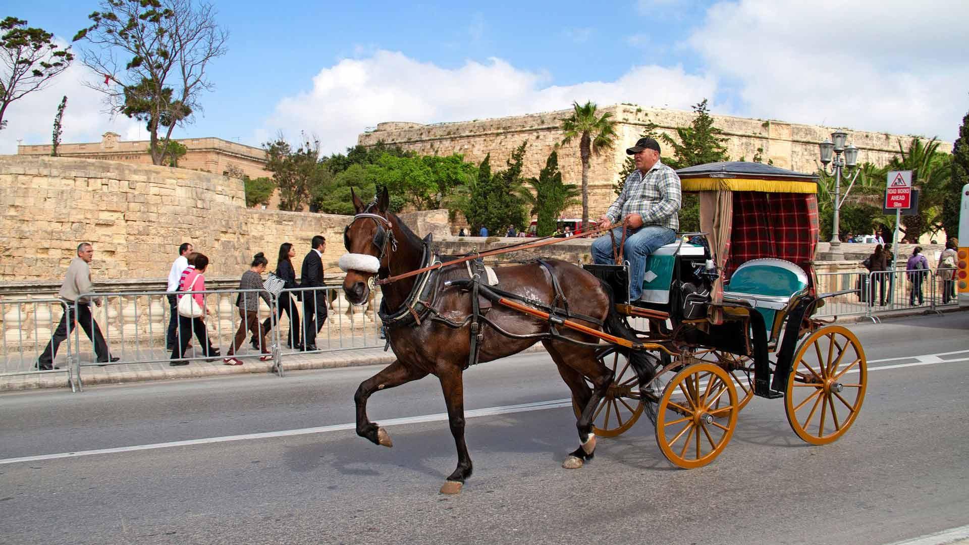 Malta on hyvin tasainen lukuunottamatta pääkaupunkia, kallion päälle rakennettua Valletaa. Kun väsyy kiipeämään Valletan mäkiä, voi jatkaa hevoskyydillä. Se sopii kaupungin tunnelmaan.
