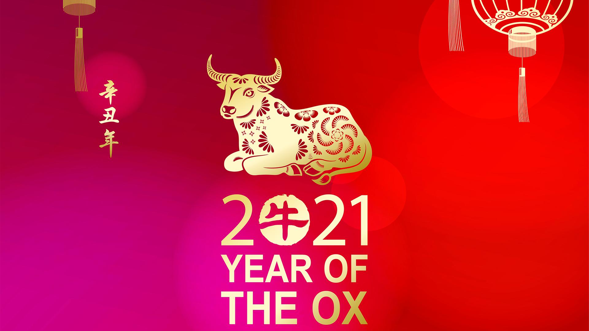 Kiinalainan horoskooppi 2021 härän vuosi