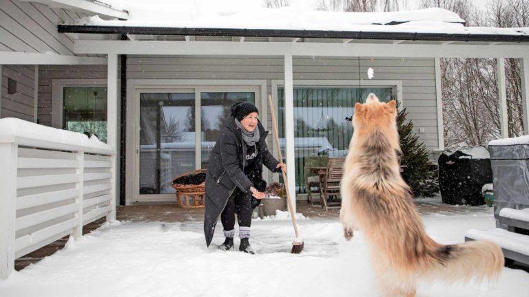 Neljävuotias Vili-koira ihmettelee suuria lumihiutaleita. Tulipalo opetti Katja Sevanderille, miten tärkeitä eläimet ovatkaan hänelle.
