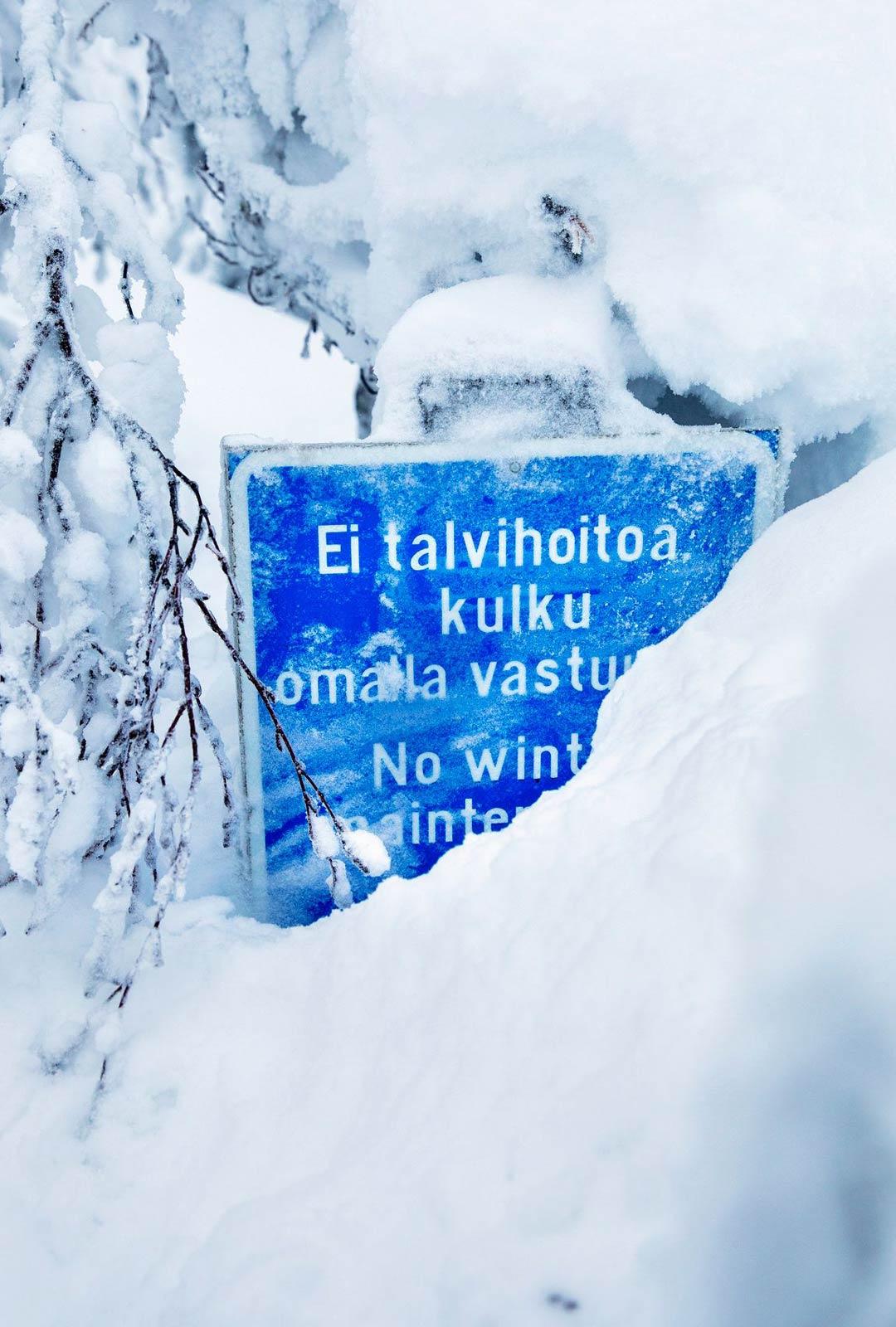 Lumikengät ovat paras tapa tutustua talviseen Kolin kansallispuistoon, sillä alle kilometrin reitti Ukko-Kolille on ainoa talvikävelyreitti.