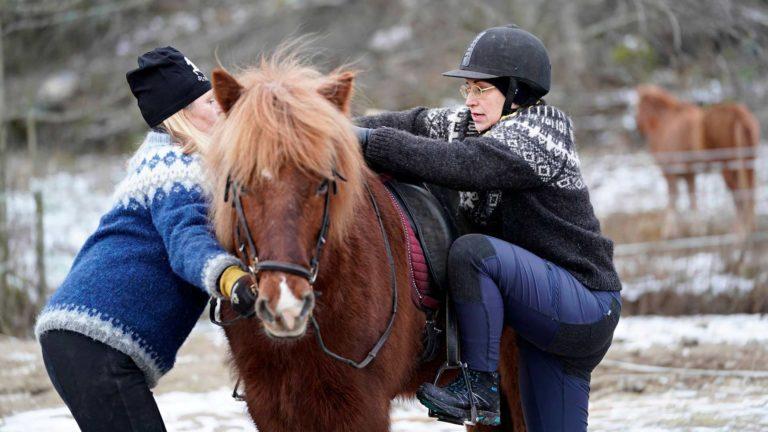 Satulaan pääseminen jännitti, mutta onnistuihan se. Onneksi 18-vuotias islanninhevosruuna on tottunut kuljettamaan selässään myös ensikertalaisia ratsastajia.
