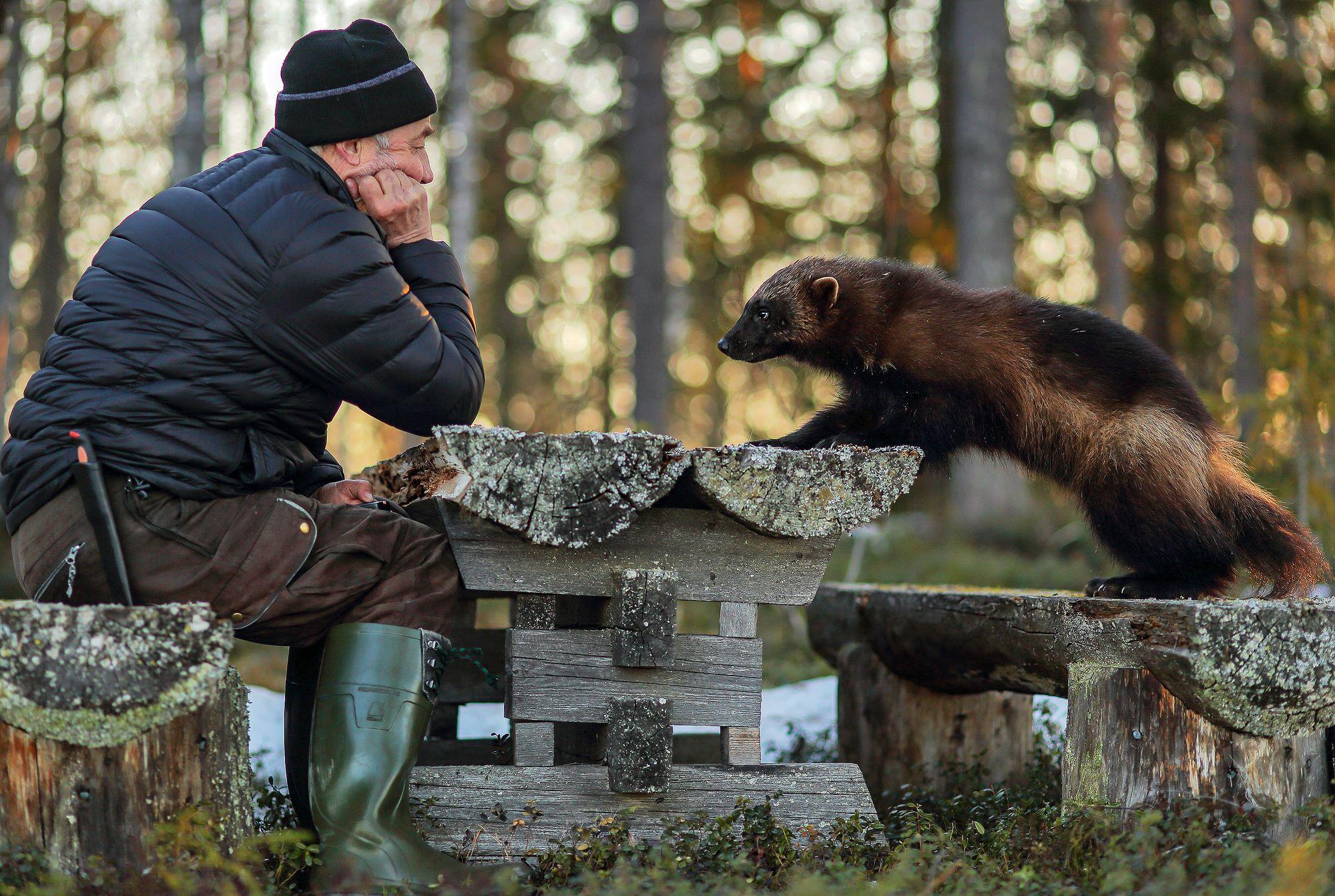 Antti Leinonen ja Heimo-ahma pitivät pihapöydän äärellä yhteisiä tuumaustaukoja © Antti Leinonen