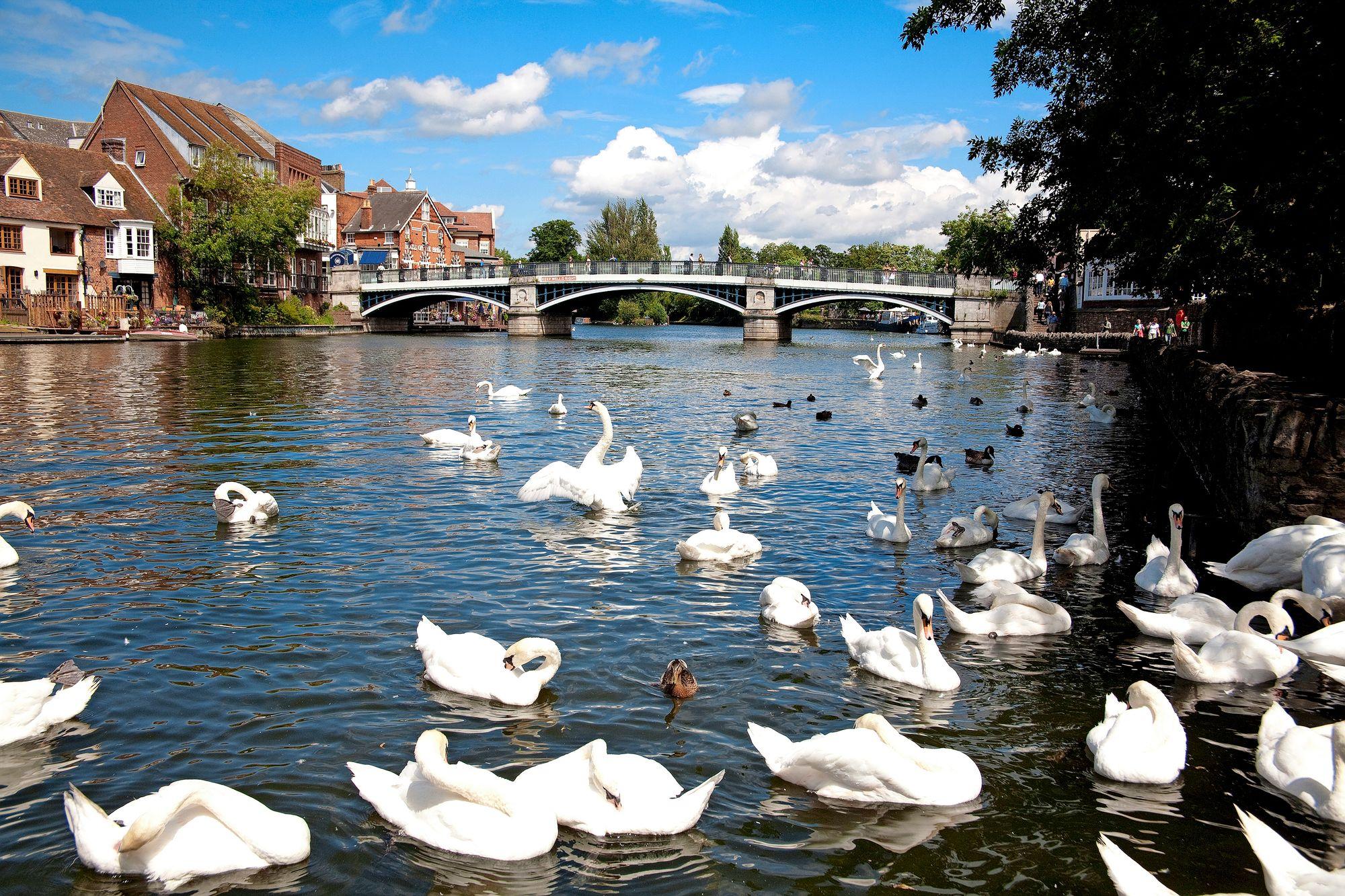 Thames erottaa Windsorin ja vajaan 5 000 asukkaan Etonin. © Donald Morgan