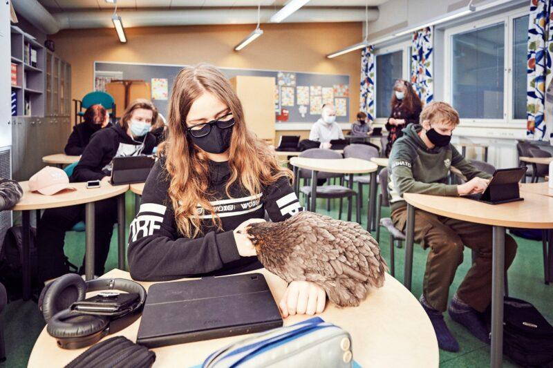 Annelilla on koulussa paljon kavereita. Se näyttää nauttivan saamastaan huomiosta ja siitä, että ympärillä tapahtuu. © Sara Pihlaja