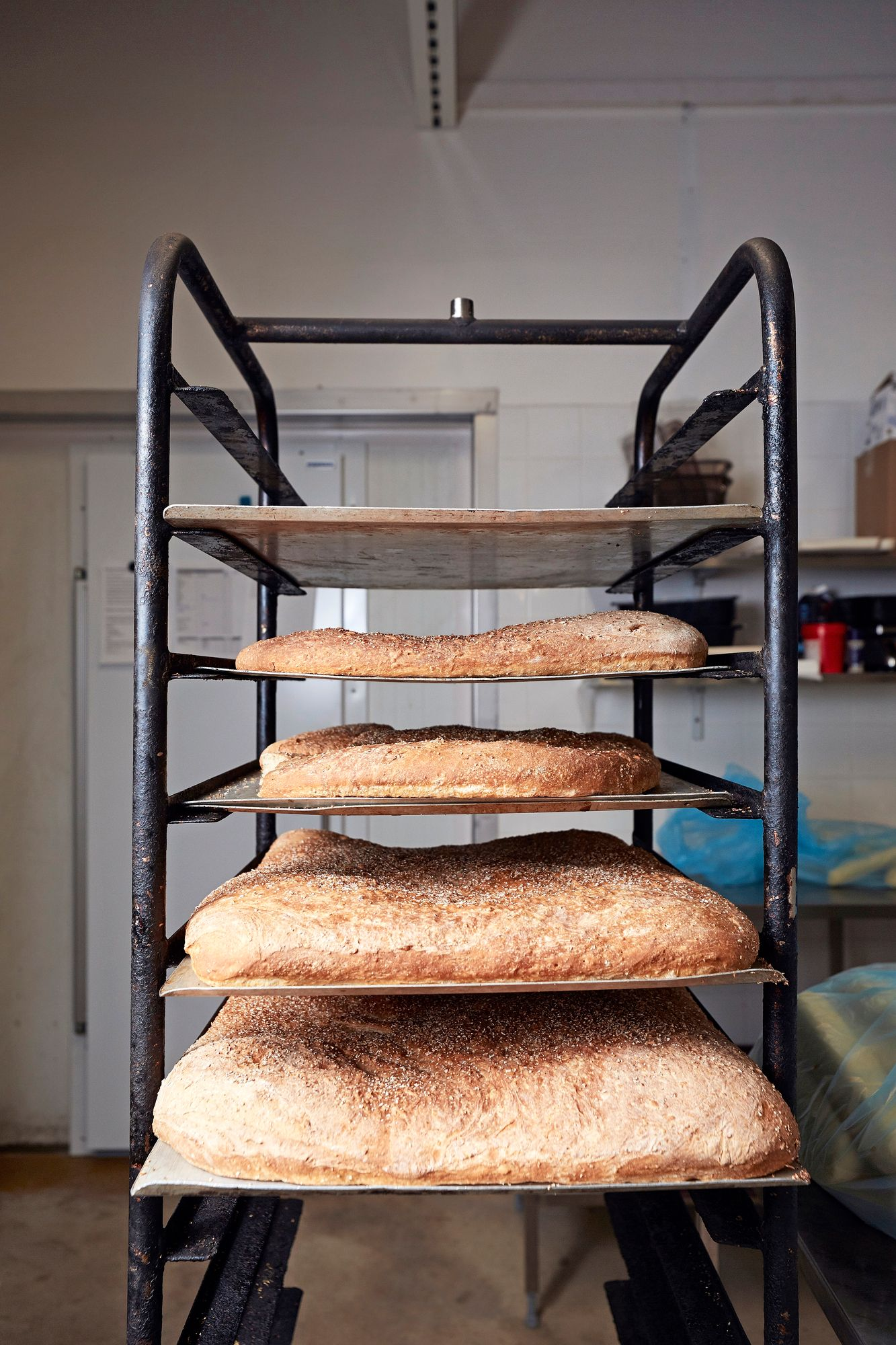 Juuri uunista tulleita milanonleipiä. © Sara Pihlaja 2021
