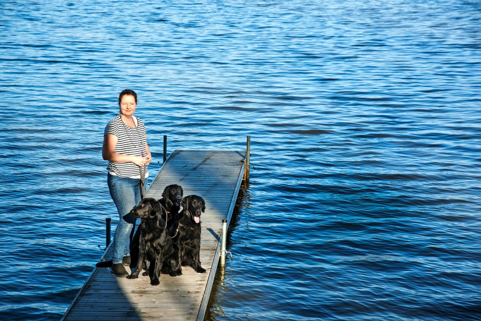 Lemmikin eutanasia on eläinlääkärin työtä.