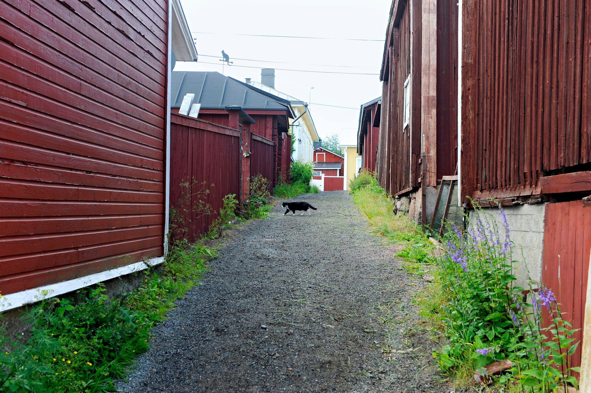Kapea Kissanpiiskaajankuja huokuu nostalgiaa ja on tunnettu nähtävyys. © Harri Vaskimo