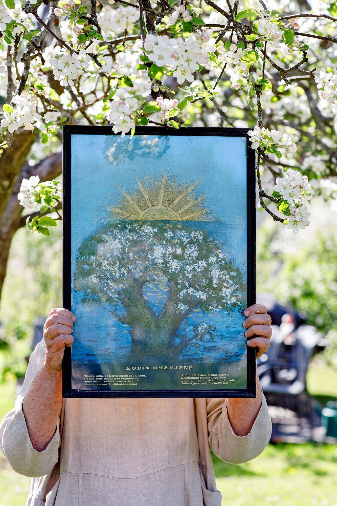 Omenapuun taimen saaneet säynätsalolaiset työläiset saivat seinälleen myös Kodin omenapuu -taulun. © Hanna-Kaisa Hämäläinen
