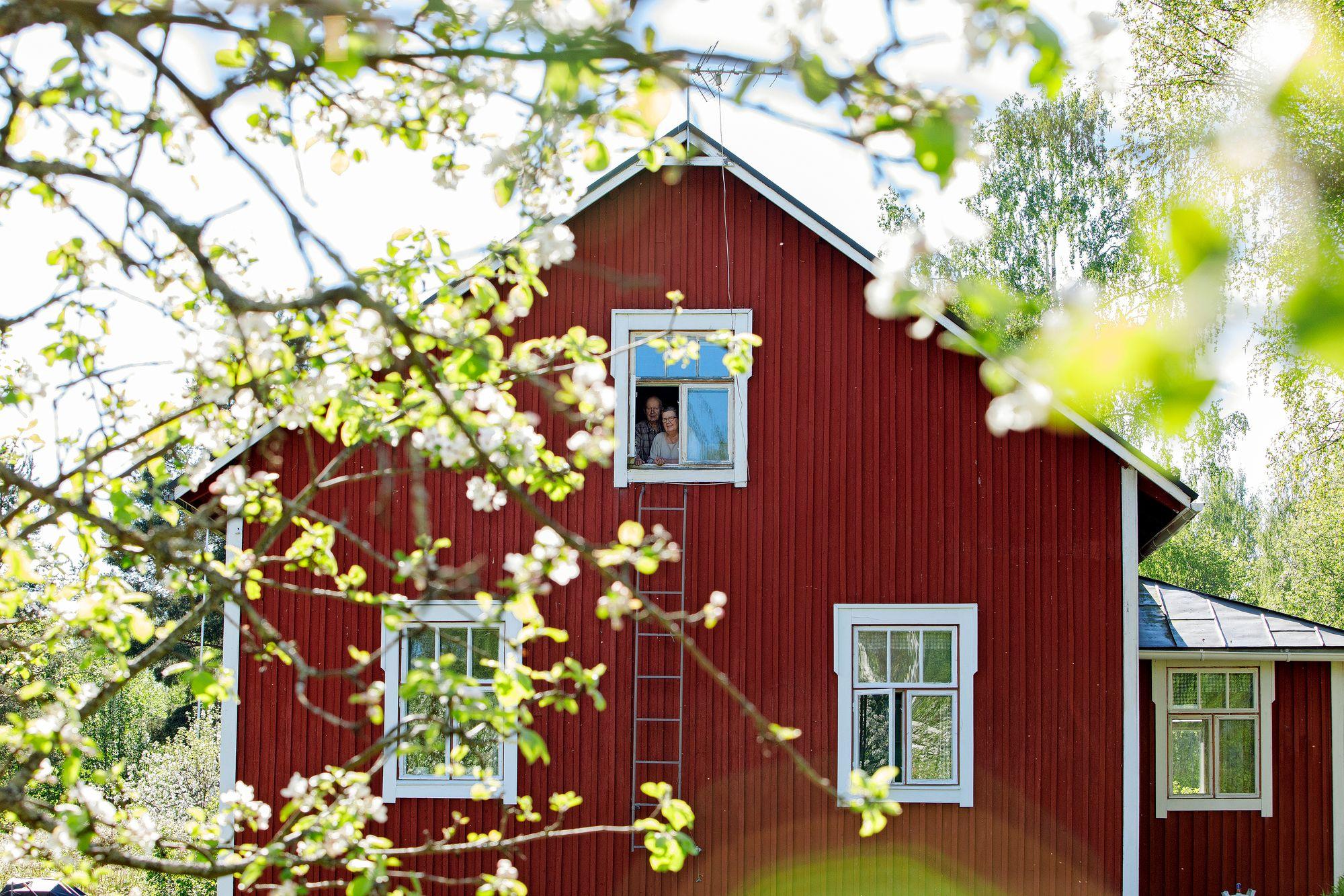 Niilo ja Ulla-Maija Frilanderin talo Säynätsalon Haikassa on alkuperäinen, 1920-luvun lopulla rakennettu työläiskoti. © Hanna-Kaisa Hämäläinen