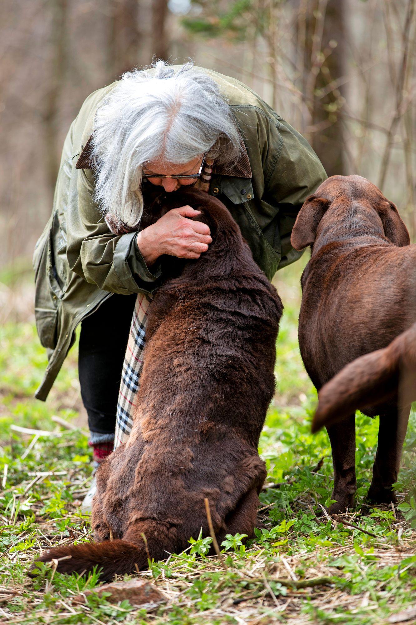 Koirat Bru, Caffe, Omppu, Leo, Robin ja Lizzie ovat Anna-Liisan ja hänen Rudi-miehensä perheenjäseniä. © Tommi Tuomi
