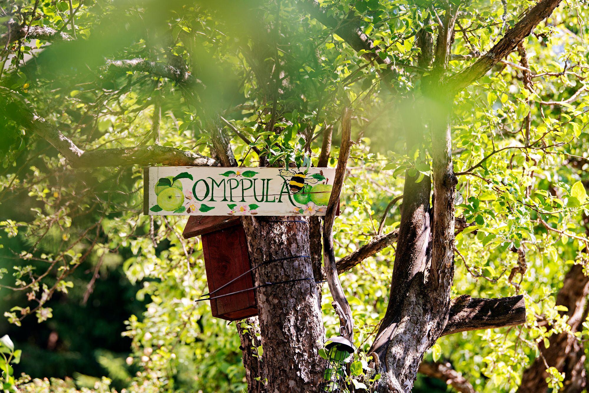 Omppula on pieni terassi linnuille Loviisan maaseudulla. Siitä kilpailevat käenpiika ja kirjosieppo. © Linda Varoma
