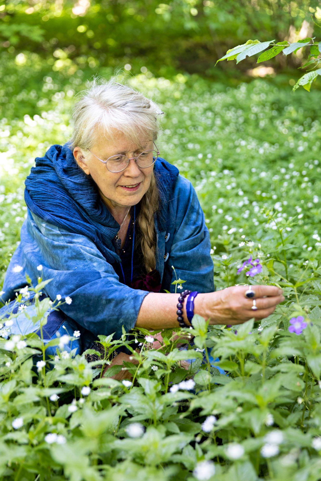 """""""Äitini oli käynyt Viipurissa talouskoulun ja opetti minut tunnistamaan kasveja ja hyötykasveja."""" © Tommi Tuomi"""