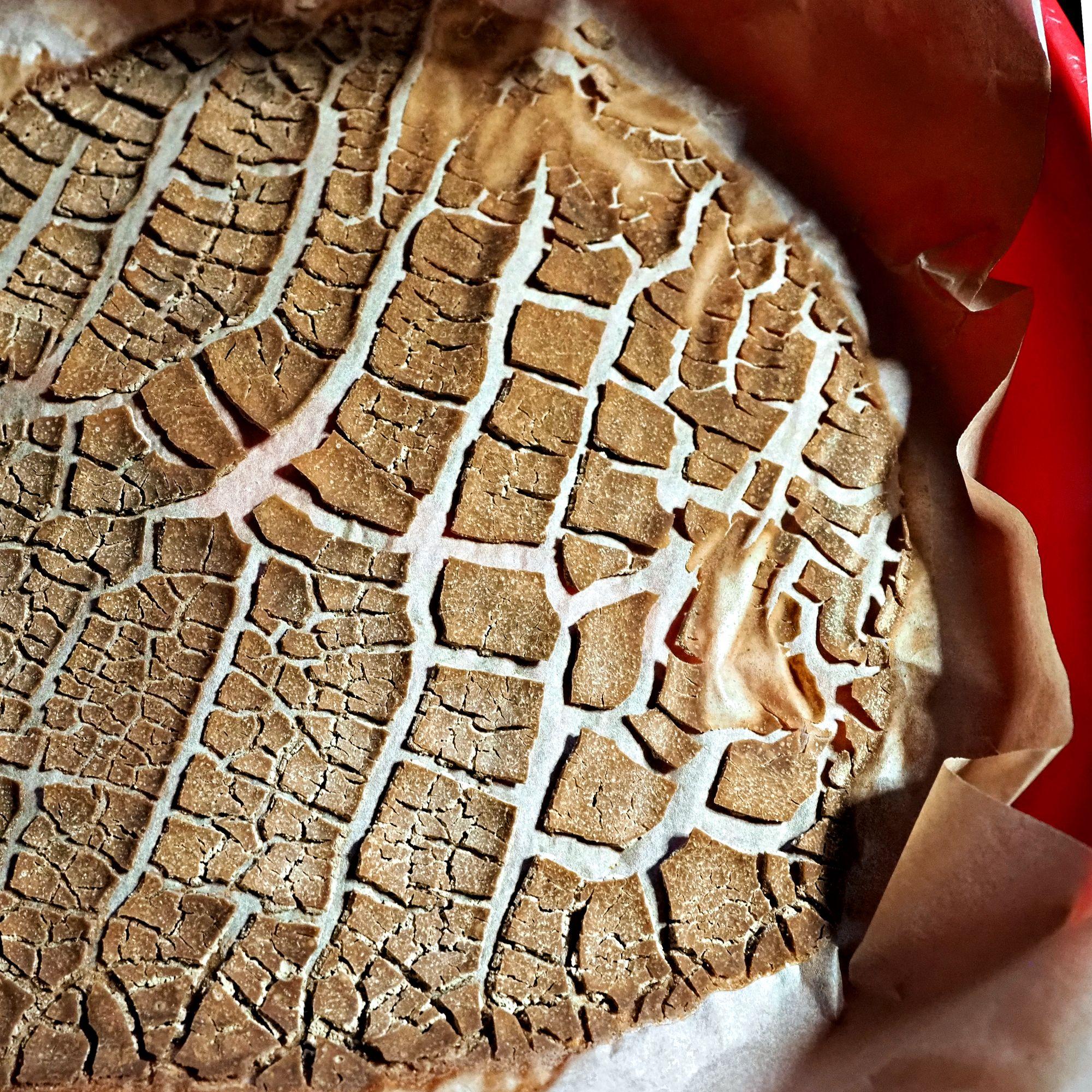 Perinteistä norjalaista kveik-hiivajuurta. Kuivattuna se näyttää reliikiltä, mutta tarvittaessa hiivajuuri herää kahdessa tunnissa käyttämään oluen. © Mika Laitinen