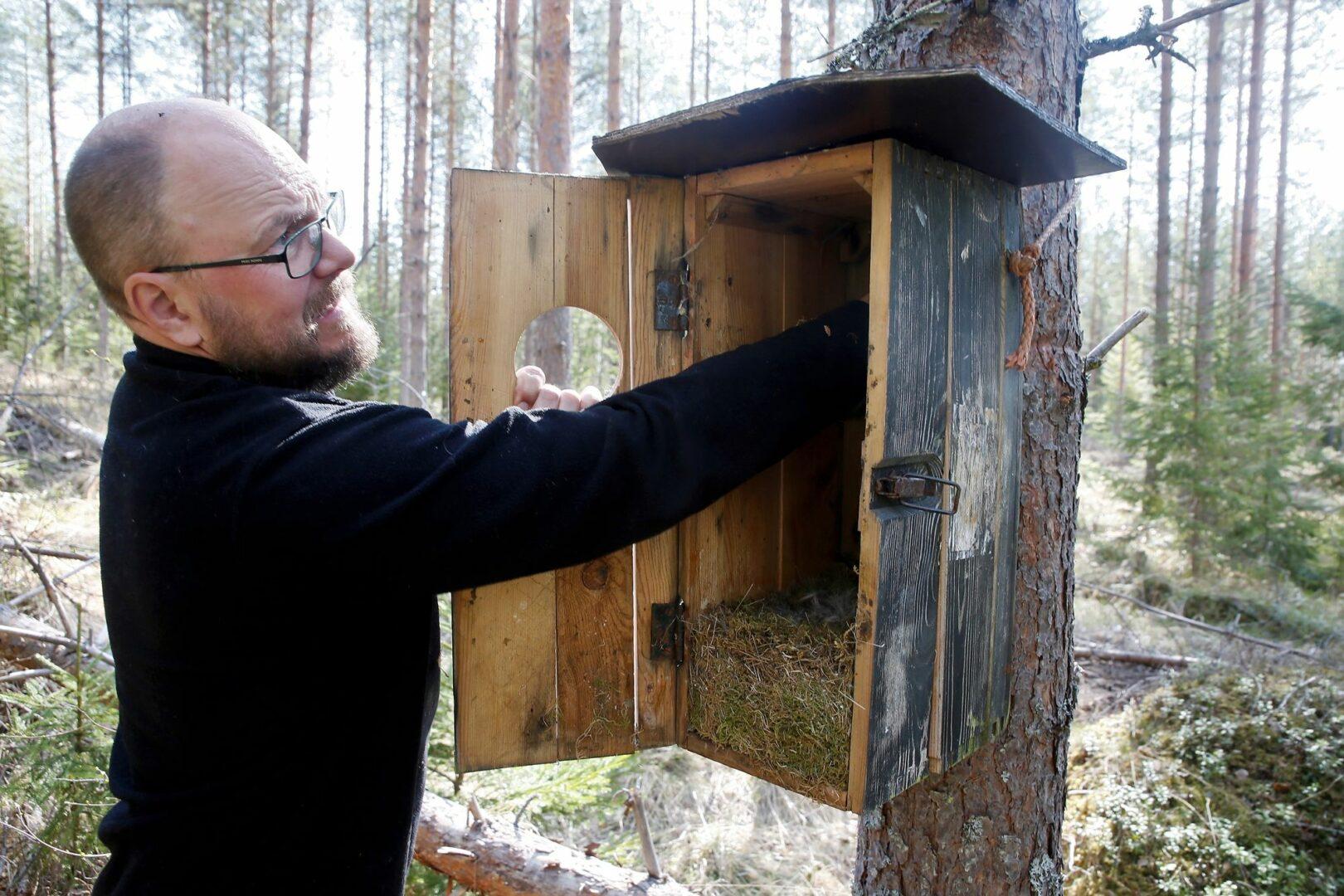 Lintujen loiset viihtyvät pesissä. Niinpä pöntöt kannattaa puhdistaa syksyllä. © Jere Malinen