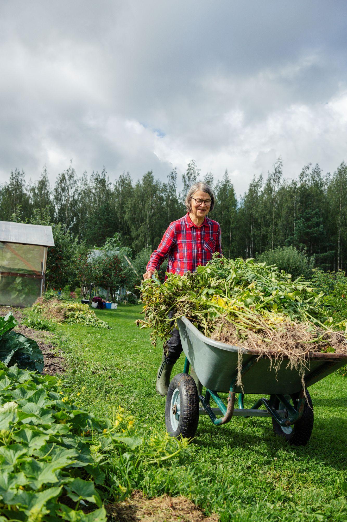 Harrastus sitoo kasvukaudeksi kotiympyröihin, mutta ulkoilua tulee riittävästi. © Pihla Liukkonen