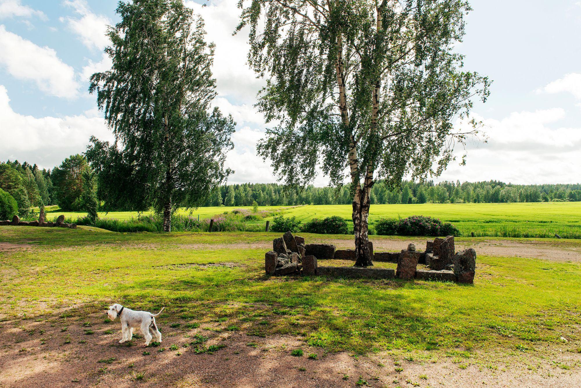 Navettakodin pihalta aukeava näkymä ja Haukku-koira © Linda Varoma